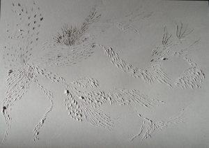 Murmuration_Lea Valmain_papier gris