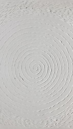 murmuration spirale